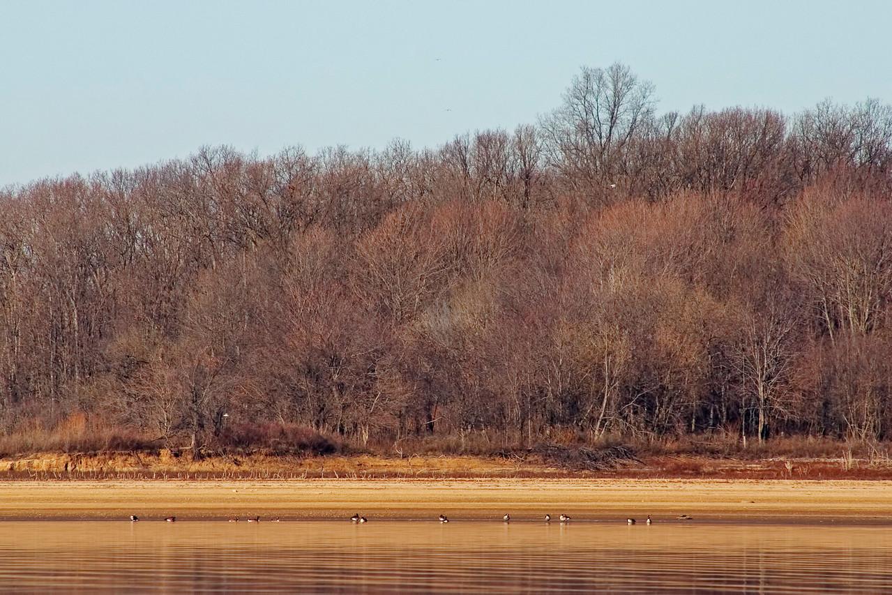 January 10 - Lake Shelbyville, Shelbyville Illinois