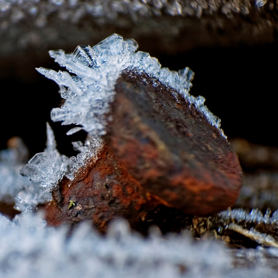 December 11 - Frost at Home