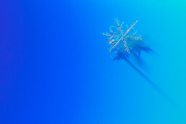 January 6, 2015 - Snowflake vs. DVD