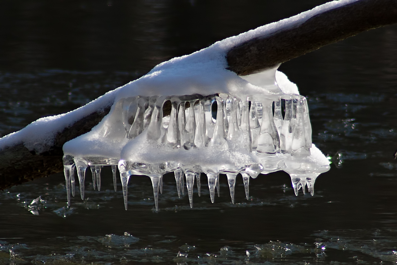 February 19, 2015 - Ice Bells on the Sangamon River