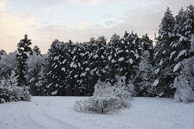 snowtreepainting