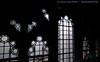 Windows in restroom at Parliament!
