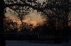 Snowy twilight scene at Pearl Buck's homestead0 - Dublin, PA