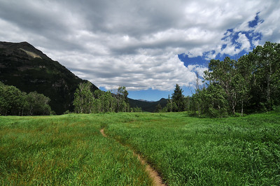 Meadow on Stewart Falls upper trail, Sundance, Utah