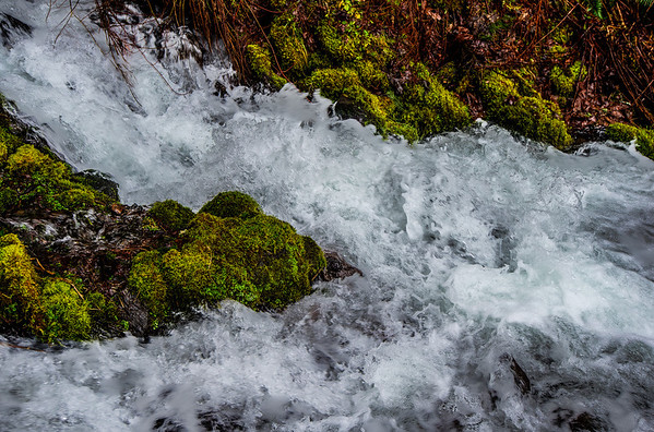 Silver Falls & Multnomah Falls State Parks