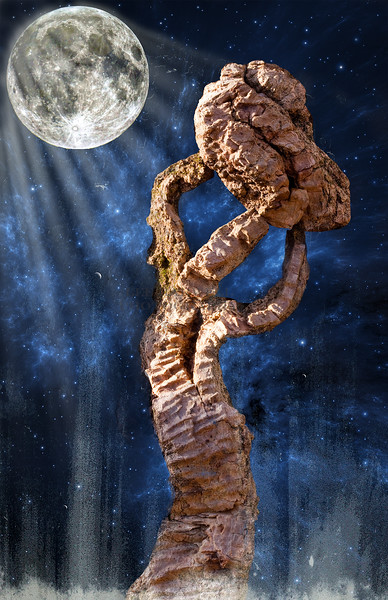 Atlas Shrugged (photo creation by Lee Harwell) (Note: The figure of Atlas holding up the Earth was a section of bark on the side of a tree in Hixon Forest)