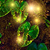 Cosmic Organics