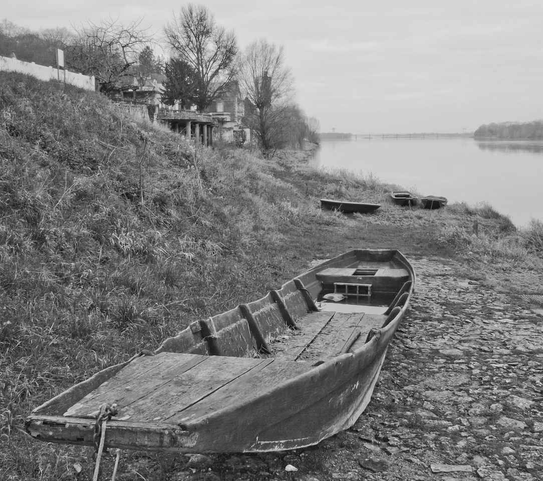 Candes Saint Martin_Loire River boats_BnW