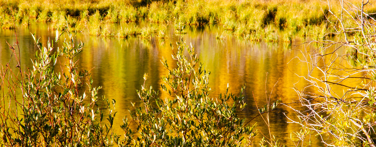 A slight breeze from the East helps to blur the fall colors as the water gently ripples.