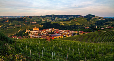 The village of Barolo, surrounded by Cru vineyards