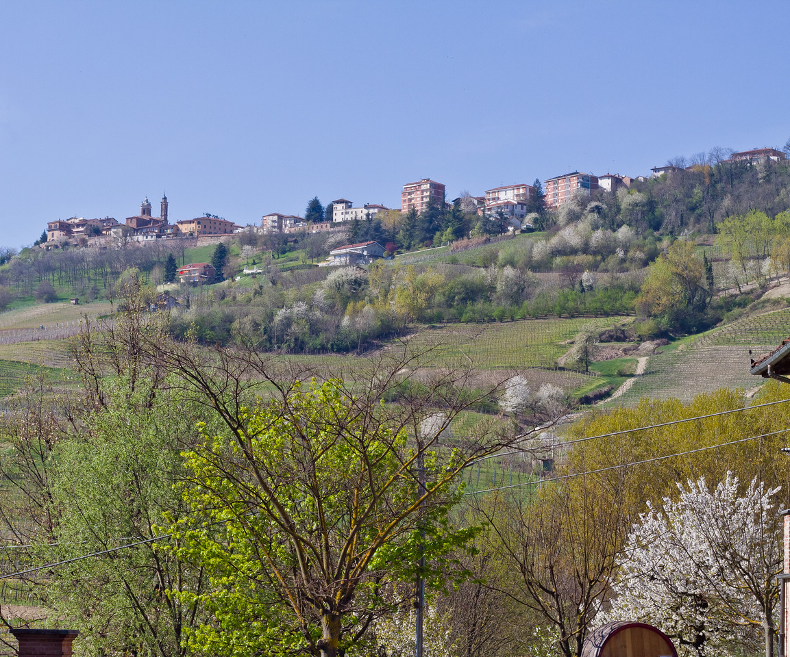 After a morning spent bottling Barolo Classico, 2007, I took a minute to capture the view of La Morra, from the parking lot/winery of Oddero, a fifth generation winegrower and producer of some of Piemonte's purest varietal expressions.