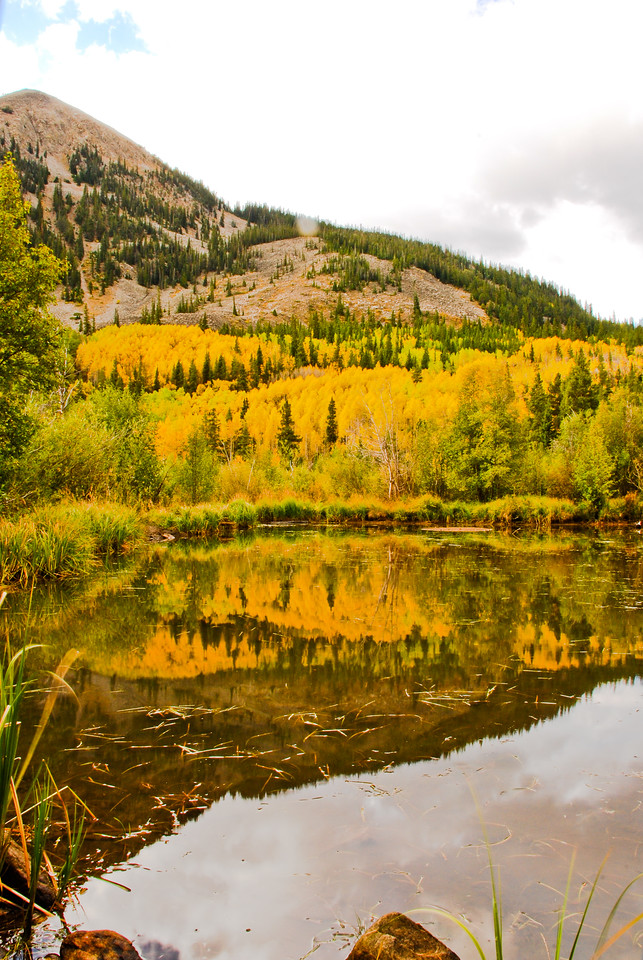 An early morning photo shoot on a very chilly fall morning in Park County, Colorado, just outside of Buena Vista. The light was pretty terrible all morning (it eventually began to rain), but this reflection shot caught my eye, duplicating the changing fall colors and making it even better