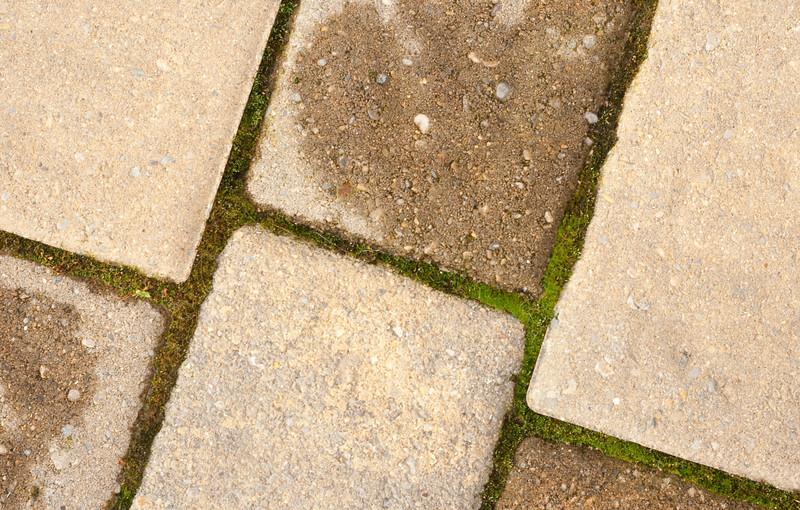 Little moss growing in between the blocks.