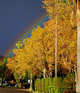 Rainbow Over Sonoma