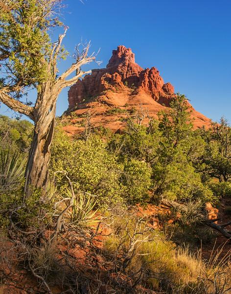 Bell Rock, Sedona, Arizona
