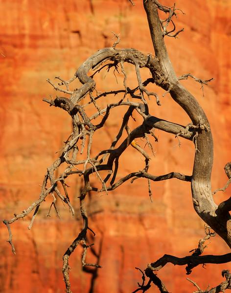 Red Rock Country, Sedona, Arizona