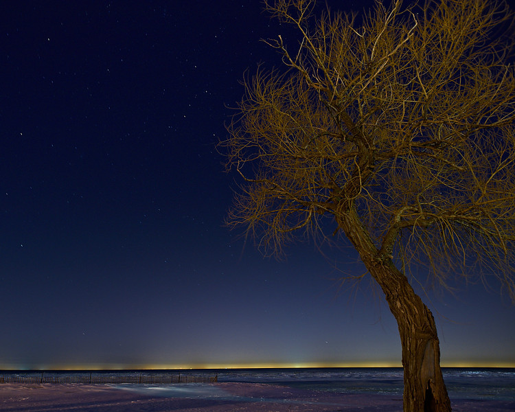 Star Gazer II - View of stars and tree - Lakeside Park, St. Catharines