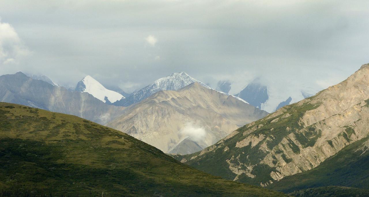 Nikon D2H capture, near Delta Junction, Alaska
