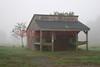 Farm Stand in North Attleboro. Foggy morning.