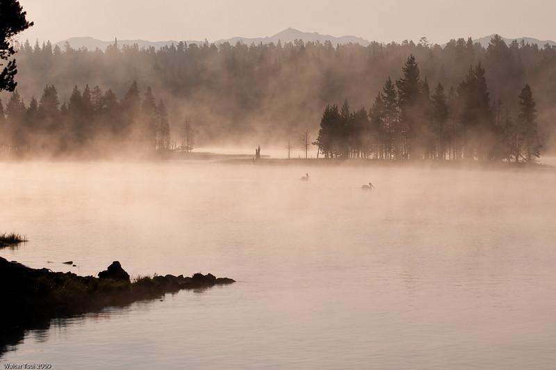Sunrise @ Fishing Bridge