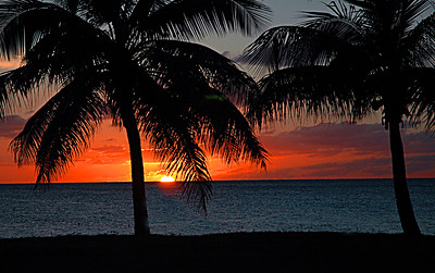 Nature and Beauty of St. Croix
