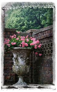flowerpotpinkflowerseged