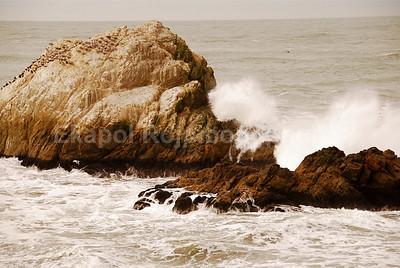 Ocean beach, California - copyright © 2007 Ekapol Rojpiboonphun