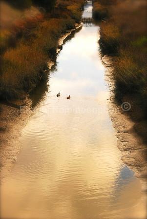 Path  copyright © 2007 Ekapol Rojpiboonphun