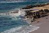 BeachRocks2956