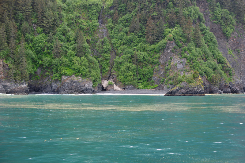 Kenai Fjords Resurrection Bay <br /> We left from Steward, Alaska - The photos doesn't do it justice