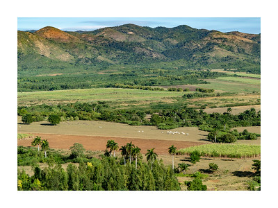Valle de los Ingenios_191218_DSC0118