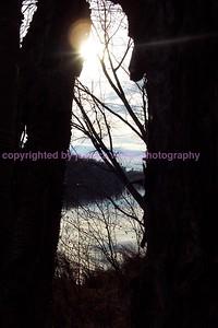 mother sun peeks through dark forest
