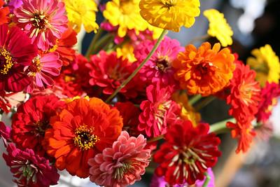 farmers mkt flowers