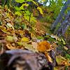 Sigulda__MG_1616-065