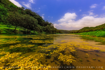 وادي دربات, ولاية طاقه, سلطنة عمان Wadi Darbat, Dhofar - Oman