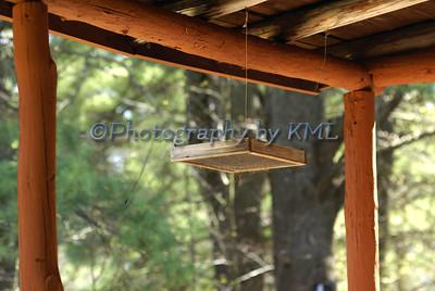 Bird Feeder on the Porch