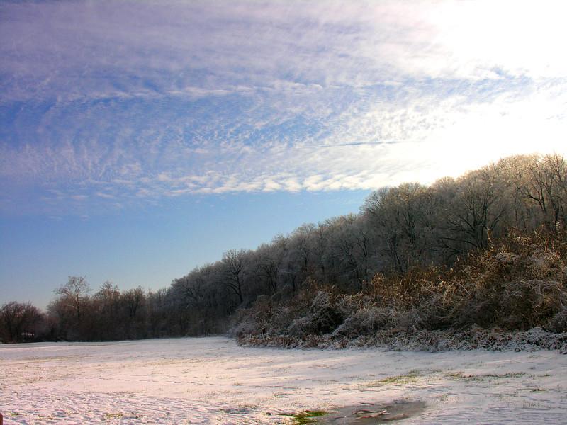 034 2006 Nov-Dec Storm - Fenton Park