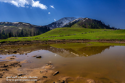 Paya, Shogran, Kaghan Valley, Pakistan