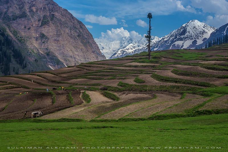 "Lalazar, Kaghan valley ""Pakistan""."