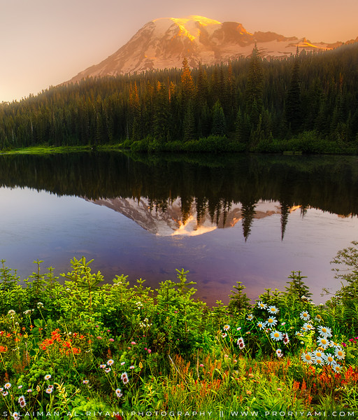 Mount. Rainier Reflection, Washington, USA