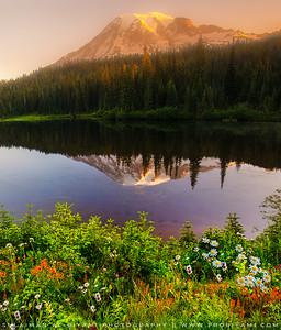Mount. Rainier Reflection, Washington, USA