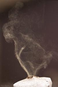 Röksvamp
