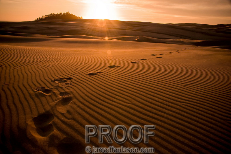 Sunset on the Oregon Sand Dunes
