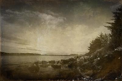 Trollskogen, Hundvåg (October 2019)
