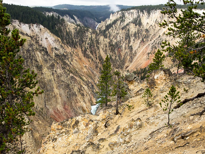 Yellowstone-382