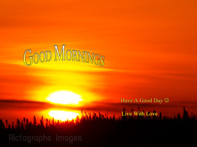 A Boreal Forest Sunrise; Live With Love,   Rictogr aphs Images