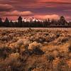 """The Sisters, Oregon """"USA"""""""