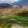 "Balad Sait village, Rustaq ""Oman"""
