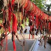 Prayer ribbons at Buddhist temple, Sanya, Hainan China on tree limb by kstellick
