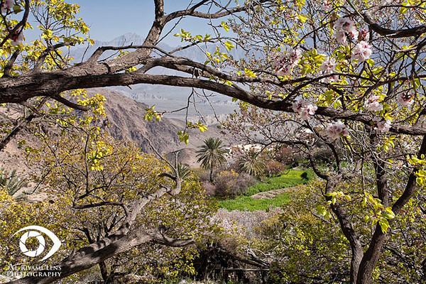 "Wakan, Wadi Mastal ""Oman"""